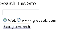 Google AdSense search form