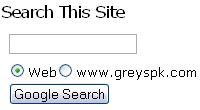 Google AdSense search form